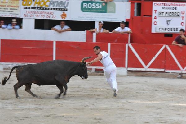 Fiesta y toros feria de ch teaurenard corrida cabaret questre - Office du tourisme chateaurenard ...